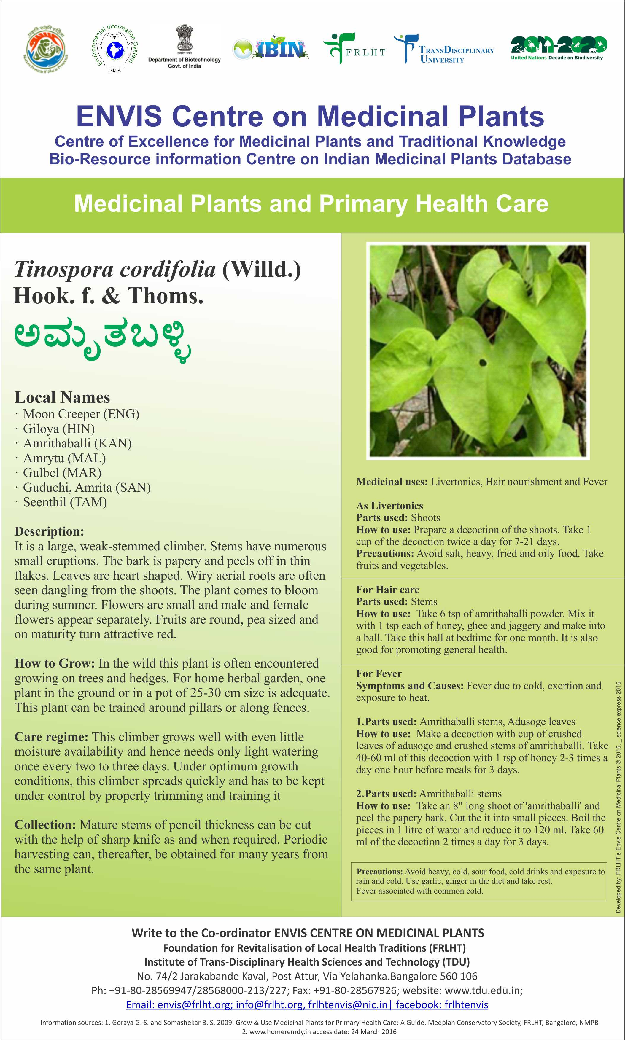 Medicinal Plants In India And Uses